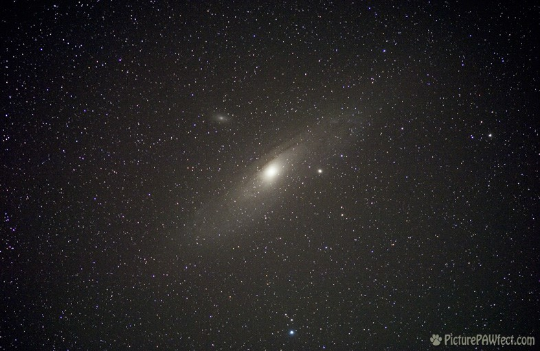 M31 in Andromeda (Sky & Space Gallery)